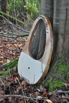 Sycamore and Spruce larger sized Lyre (*52cm)