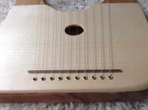 Beech 10 string2