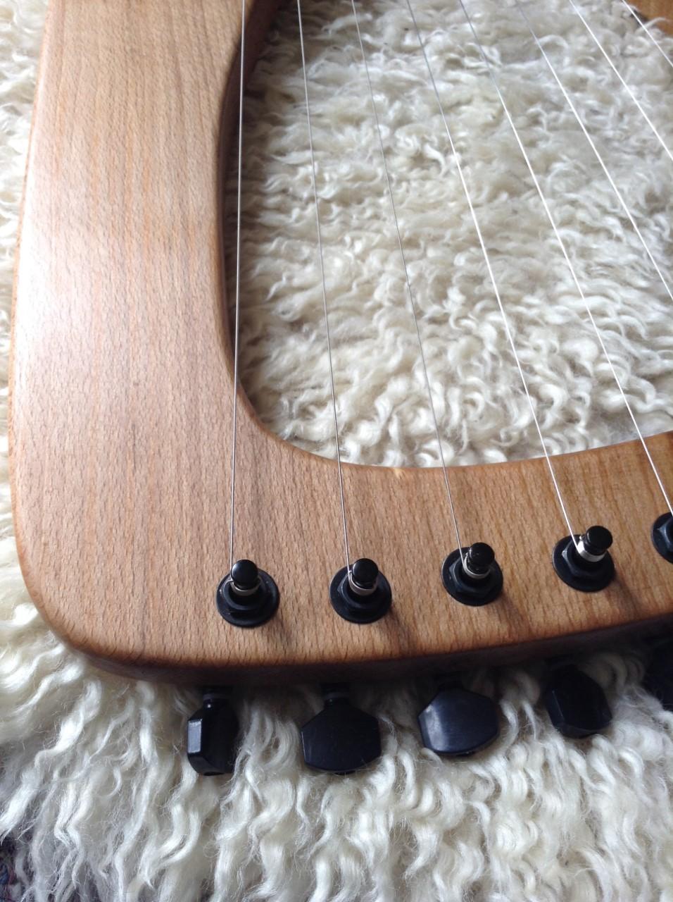 Beech 10 string5